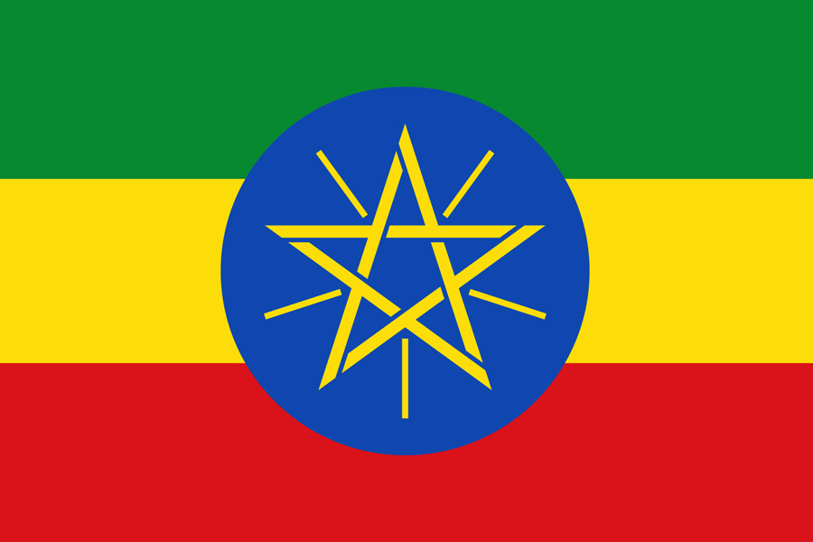Bid for consultancy services of dispute settlements in Ethiopia