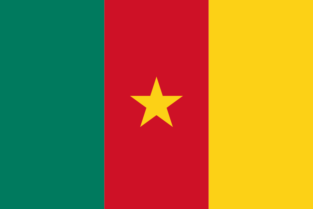 Cameroon signs the United Nations Convention on Transparency in Treaty-based Investor-State Arbitration